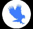 Event Hawk
